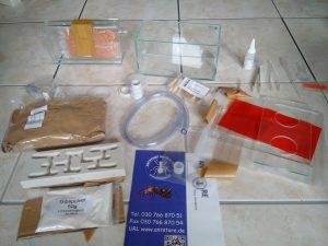 Inhalt des Antstore Pakets mit Bestandteilen eines Formicariums
